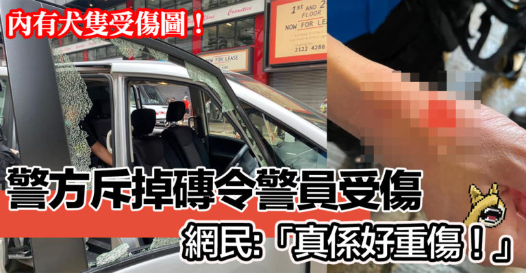 【有相】警方斥掉磚令警員受傷     網民:「真係好重傷!留院啦!」