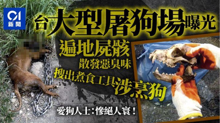 【多圖慎入】大型屠狗場曝光 遍地屍骸如地獄 大量煮食工具